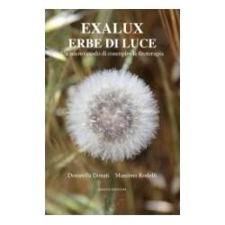 Exalux -Erbe di Luce - Donatella Donati e Massimo Rodolfi