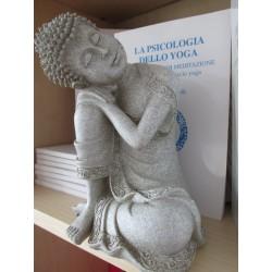 Statua Buddha Pacifico : statua artigianale indiana