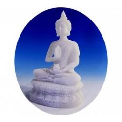 Statua Buddha Amrita seduto : statua artigianale indiana