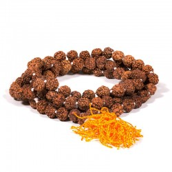 Mala Rudraksha 108 grani